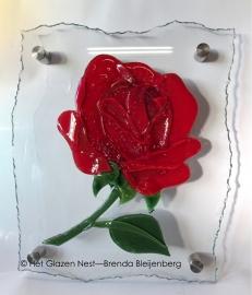 roos op blank glas met gebrokkelde rand