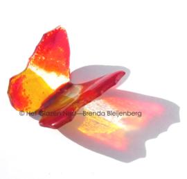 Rood en oranje in transparante vlinder