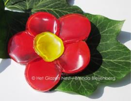 rode bloem met geel hartje