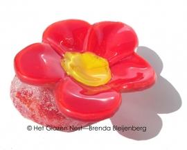 klein rood bloemetje op rood en blank voetje