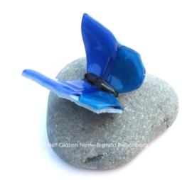 Blauwe vlinder op steen uit IJsland