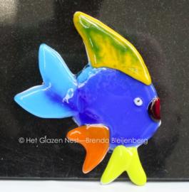 Maanvis in bonte kleuren