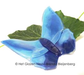 vlinder in blauwe kleuren