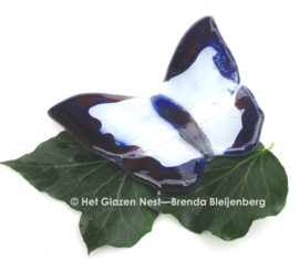 Witte vlinder met paarse randen