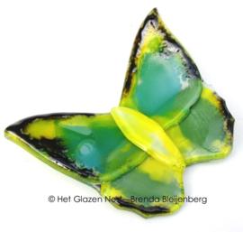 Groene vlinder met gele accenten