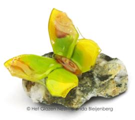 Groen en gele vlinder op steen