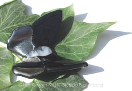 Bijzondere zwartgrijze vlinder, ondoorzichtig glas