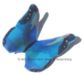 Bijzondere blauwe vlinder van glas