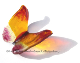 Oranje vlinder met roze accenten