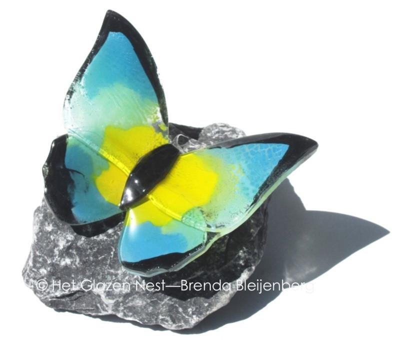 vlinder op steen in geel, blauw en groen