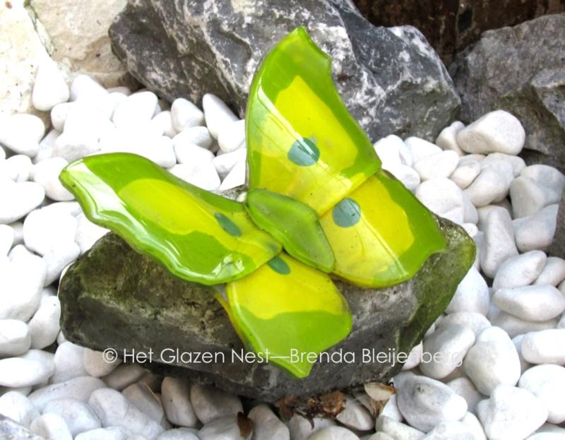 geel en groene vlinder op ruwe steen