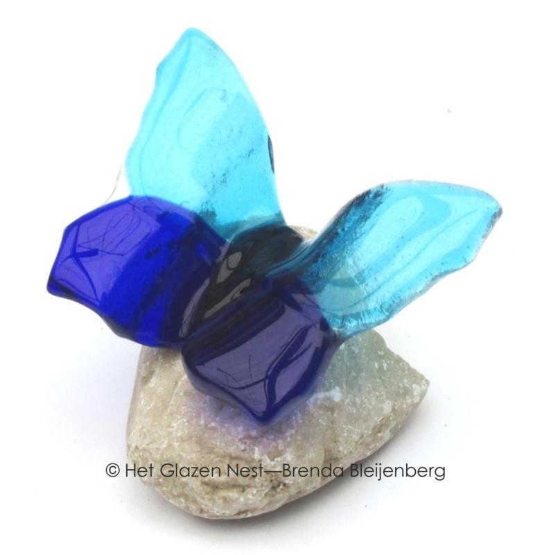 Kleine blauwe en aqua vlinder op steentje