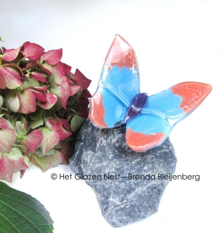 Roze en blauw vlindertje op grijze basalt