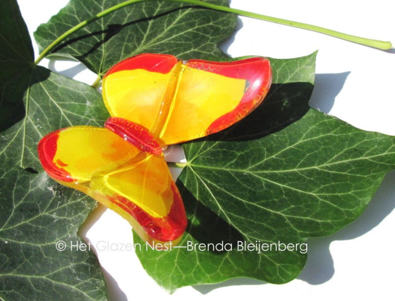 klein geel en rood vlindertje