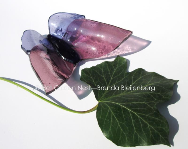 vlinder in paars en lila