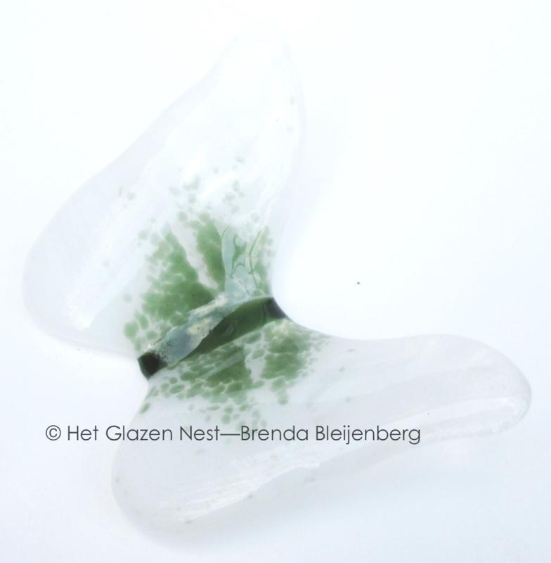 Witte vlinder met groene accenten