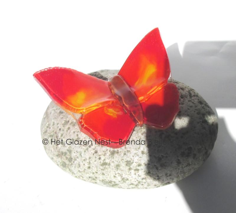 kleine rode vlinder  op kleine kei
