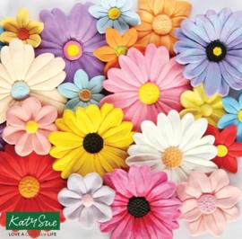 Big blossoms ( Katy Sue)