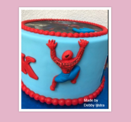 Spiderman mold