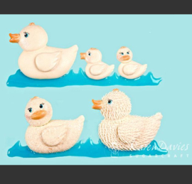 Rubber duck mold ( Karen Davies)
