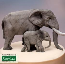 Elephant Family ( Katy sue)