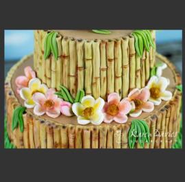 Bamboo by Alice (Karen Davies)