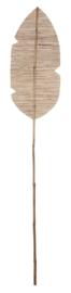 ML 530815 | Bananenblad - 175 cm | MUST Living DTP - ALLEEN AFHALEN!