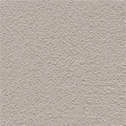 Rustic@ Monument Grey, 2,5LTR