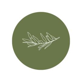 42 ronde stickers | Olijftakje illustratie - groen