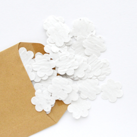 Groeiconfetti met kraftenvelop | FLOWER