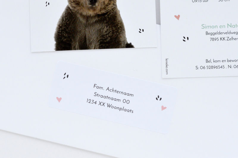 14 adresstickers | FOREST FRIENDS - roze