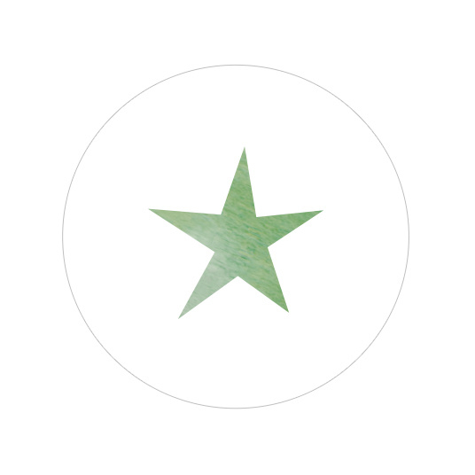 48 ronde stickers   Aquarel ster - oudgroen