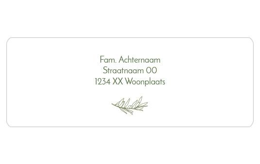 14 adresstickers | Olijftakje lijntekening - groen