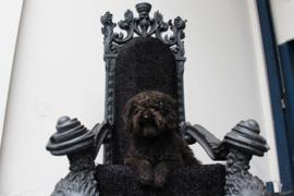 Grote zwarte troon