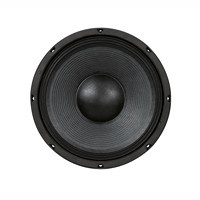 Audio Kenford - Kenford PA300 PA-subwoofer 300mm 8 Ohm