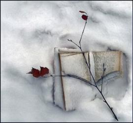 Problemen van een boekenliefhebber: wat te doen in de winter naast lezen?