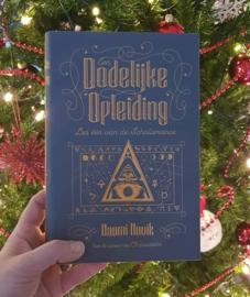 Kerst Adventsbox ~ NL