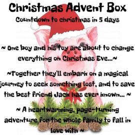 Christmas Advent Box