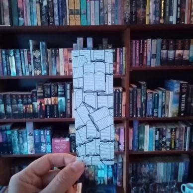 AnderWereld Boekenlegger - Books