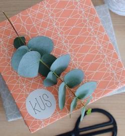 Cadeau papier -koraalrood