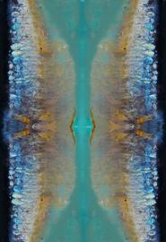 Sardines Blue
