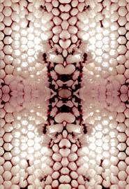 Honingraat Open Pink