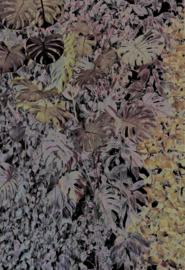 Foliage Black