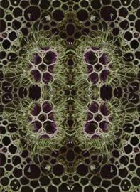 Bubbles Black 4x