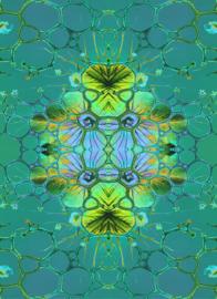 bubbels groen