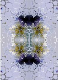 bubbels lila