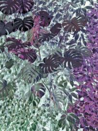 paarsblaue bladerdek