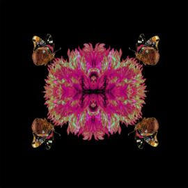 Vlinder-Bloem