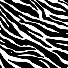 Siser Easy Pattern - Zebra (30cmx50cm) + TTD