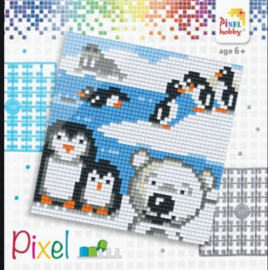 Pixel set - Pooldieren